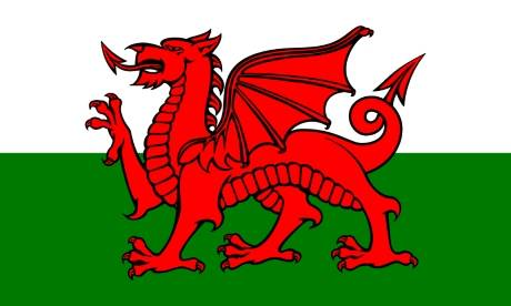 The Flag of Wales  Photograph: Traditional