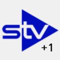 STV+1 logo